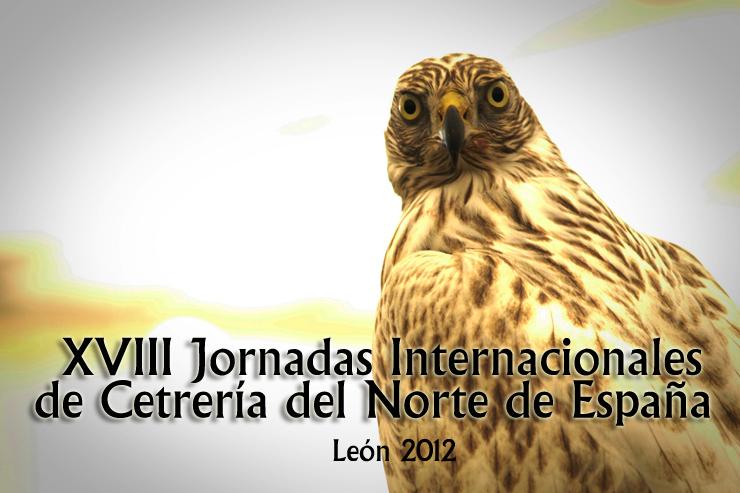 portada_cetreria2012_jmfotografos